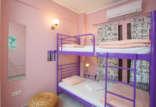 4.Superior 6 Bed Mixed Dorm Ensuite (Room 1)